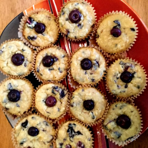 Healthy Low-Carb Blueberry Muffins, plain