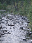 tranquil river pix 7