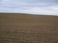 empowering grasslands pix 7