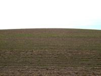 empowering grasslands pix 8