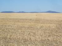 empowering grasslands pix 9