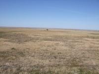empowering grasslands pix 1