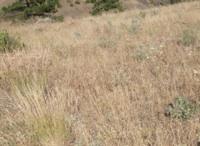 empowering grasslands pix 2