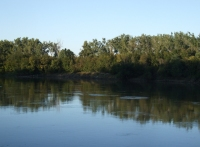 tranquil river pix 22