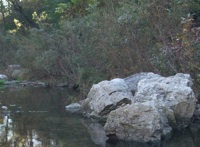 tranquil river pix 23