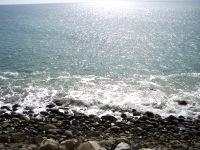 tranquil beach pix 7